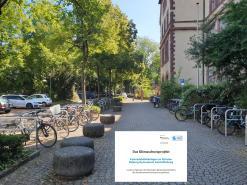 Neue Fahrradabstellanlagen am Dalberggymnasium in der Grünewaldstraße