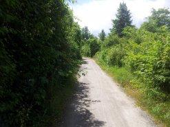 Bestehender Ringradweg