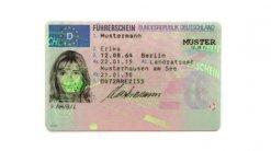 Muster EU-Kartenführerschein