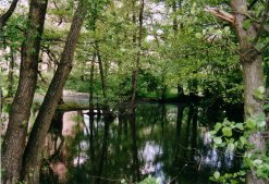 Am Ufer des Hannewackeldudelsees