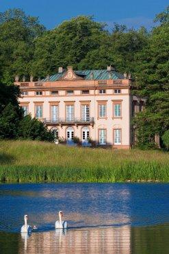 Blick über den See zum Schloss Schönbusch