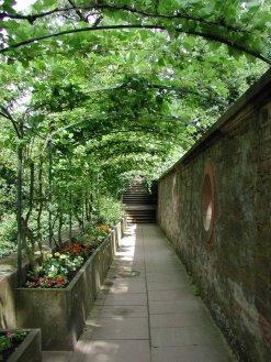 Bild vom Laubengang im Schlossgarten