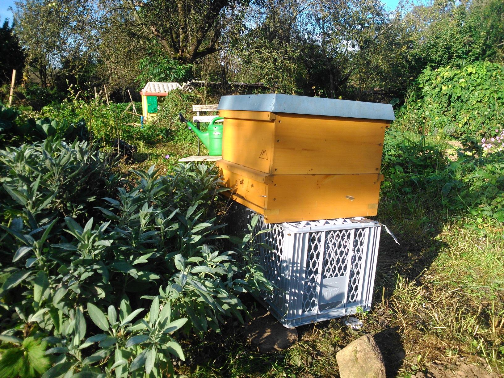 Bienenkasten im Garten