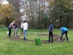 Mehrere Personen bei der Gartenarbeit
