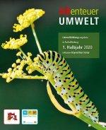 ABenteuer Umwelt: Raupe des Schwalbenschwanzschmetterlings auf Fenchelpflanze