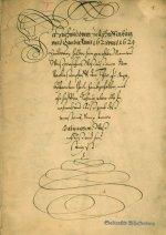 Akte zur Hexenverbrennung 1628/29