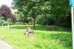 Spielgeräte auf der grünen Wiese auf dem Spielplatz Zangstraße