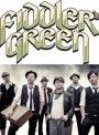 Fiddler's Green - Irish-Speedfolk mit Bewegungsgarantie fürs Publikum  diesmal mit Strom